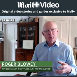 Roger Blowey-RCVS Specialist-Mail+ Interview